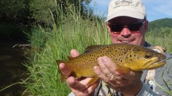 Springtime Driftless Brown