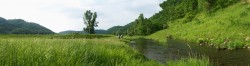 Driftless Scenery