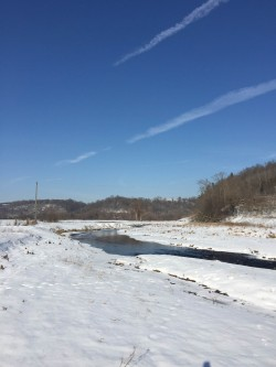 Winter Season in the Driftless